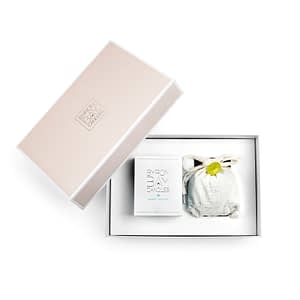 Scented pure soy candle front view and refill gift set